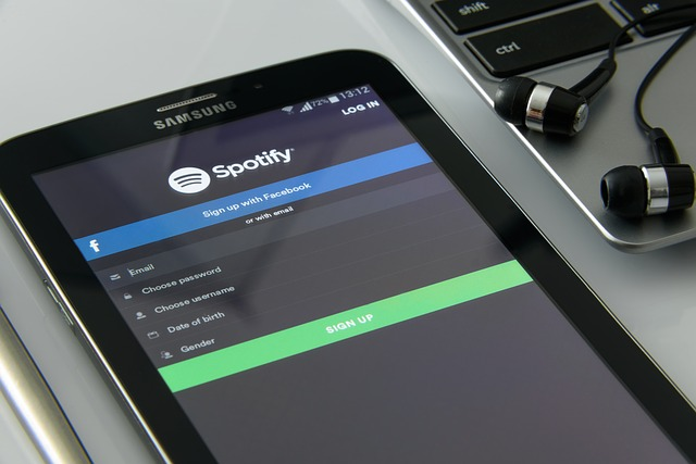 Hoeveel data gebruikt Spotify ongeveer?